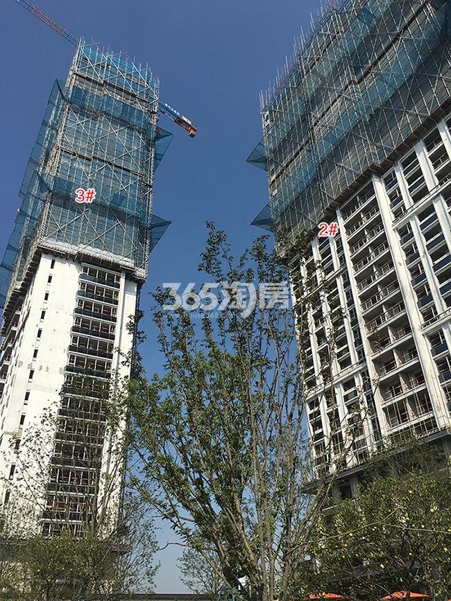 万科融信西雅图2、3号楼实景图(2017.10)