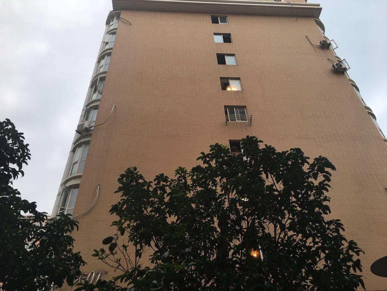托乐嘉单身公寓1室1厅1卫34.1平方米100万元