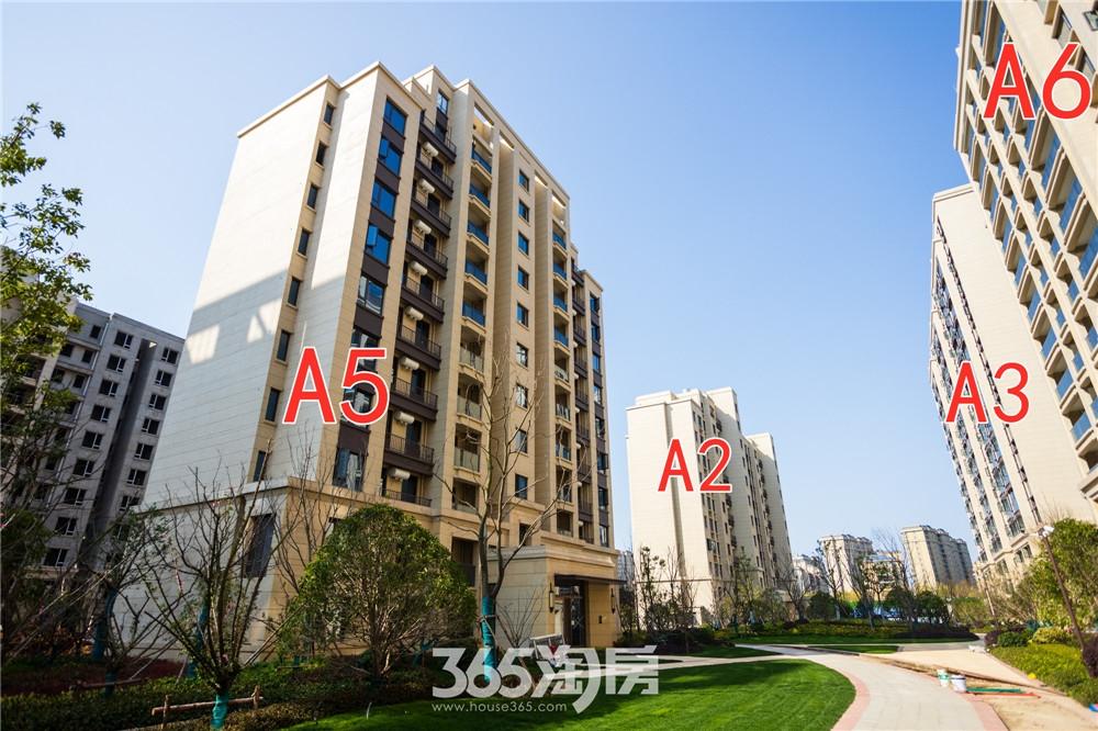 汀海壹品A2#A3#A5#A6#工程进度:一期楼栋正在进行室内质量消缺,分户验收准备(2020.3摄)