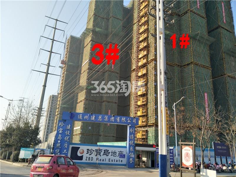珍宝岛熙悦府1、3#楼工地实景图(1.24)
