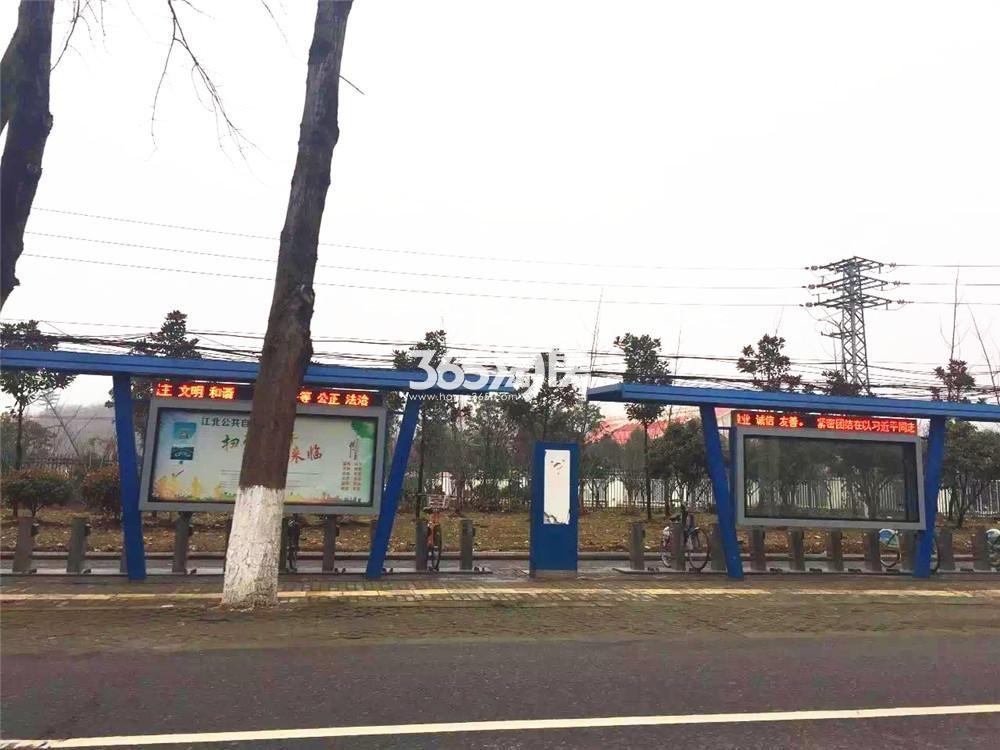 金隅江浦G07地块实景图