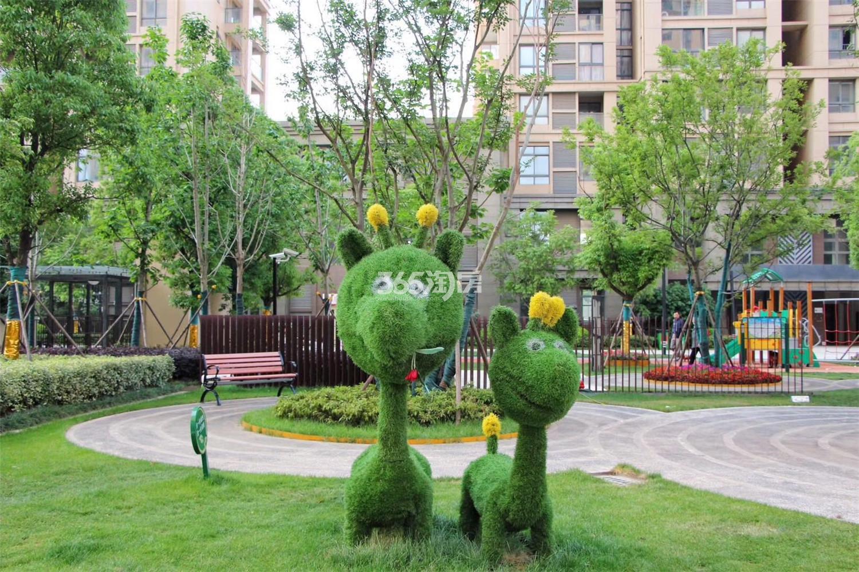 万科金域国际已交付小区绿化(7.17)