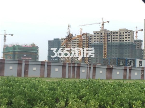 金隅紫京府项目实景图(9.11)