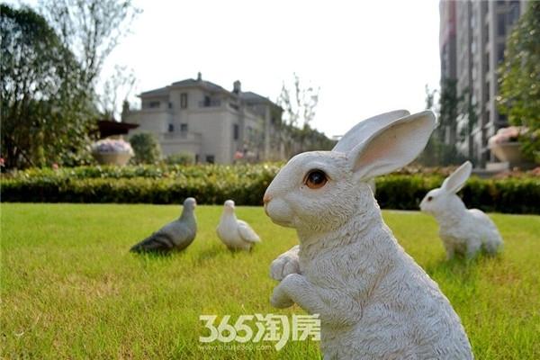 信达蓝湖郡特色小兔子(2016年8月摄)
