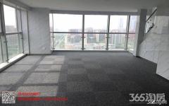 南部新城 南京南站 地铁口 户型方正 次新房 业主急售 看房方便