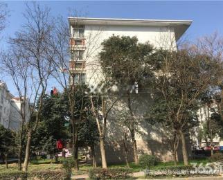 艾菲国际 3号线地铁口急售换房 一中学区只需75万 落户江北