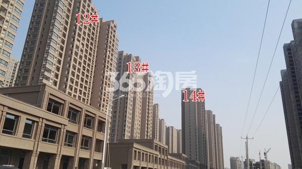 荣盛花语城一期12-14#楼实景(12.14)