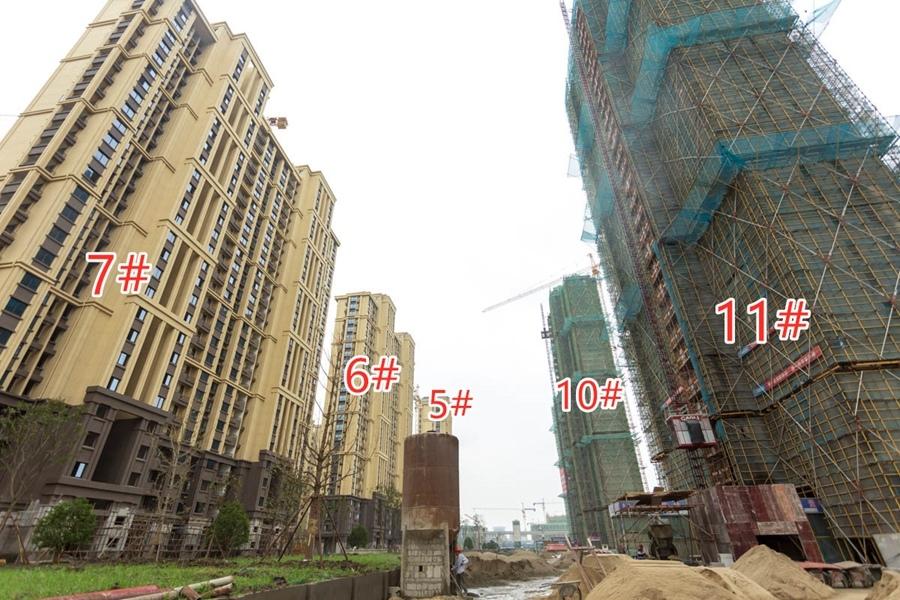 信德悦城5#6#7#10#11#楼工程进度(2019.9摄)