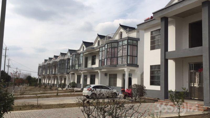 意农山庄5室3厅3卫210平米2015年产权房毛坯