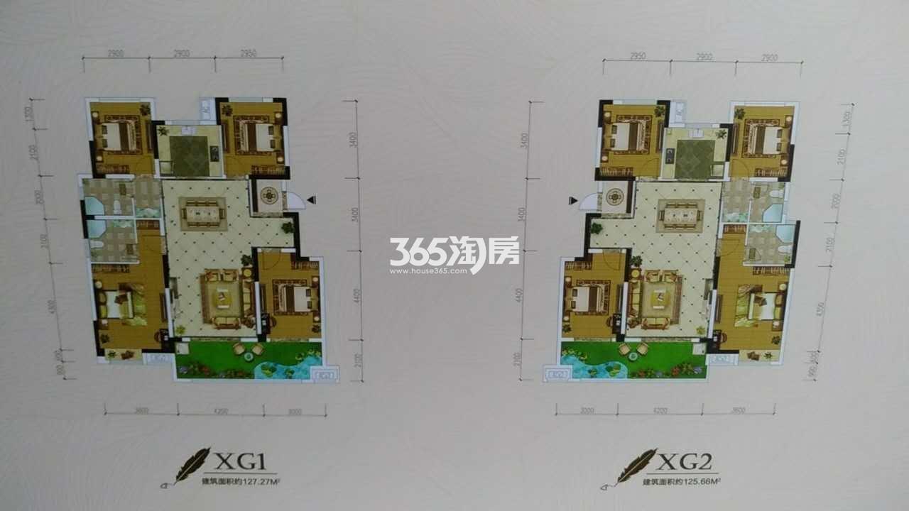 振兴国悦府户型图XG1、G2