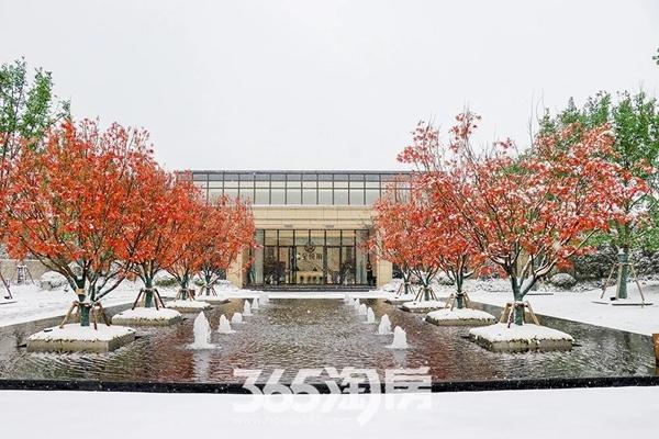 伟星金悦府雪景实景图-喷泉(2018.1摄)