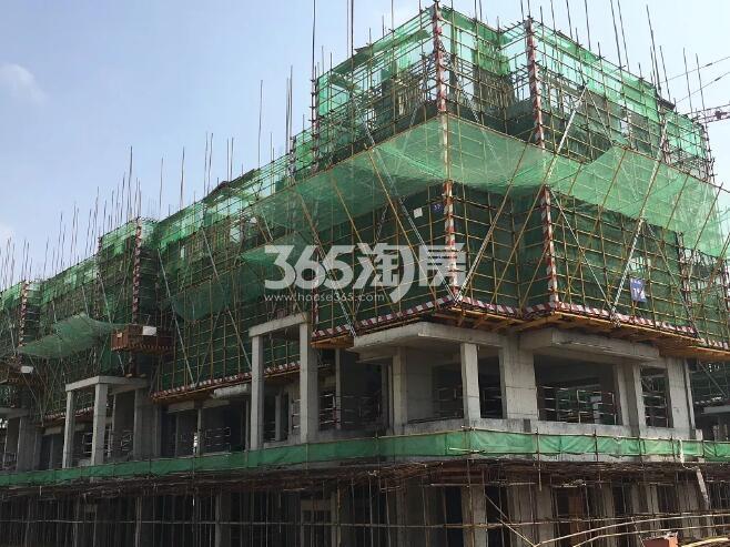 绿都地产少荃府Y-7#工程进度近景图