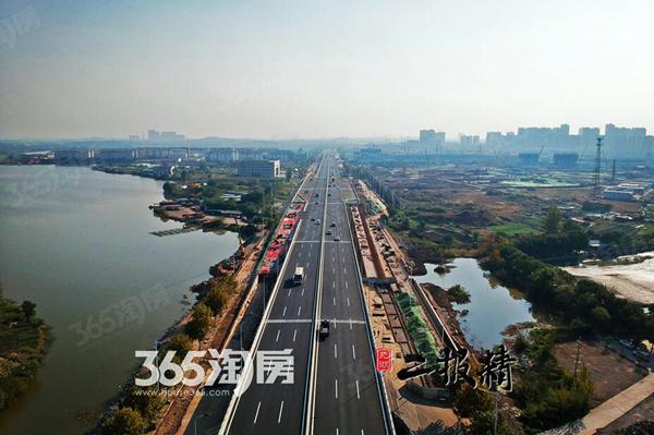 """南北向""""城市走廊"""" 16分钟驶完15.9公里弋江路"""