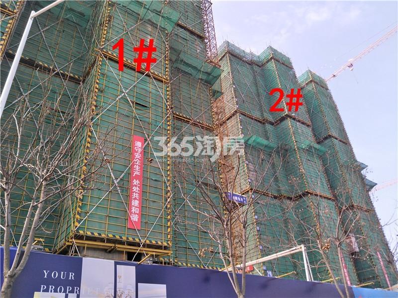 珍宝岛熙悦府在建1、2#楼实景图(3.29)