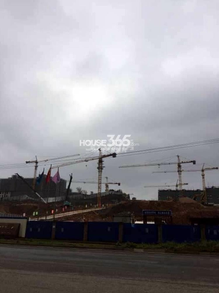 高科荣境北面的工地施工实景图(11.13)