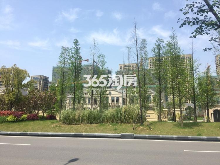 翠屏诚园周边实景图(4.14)