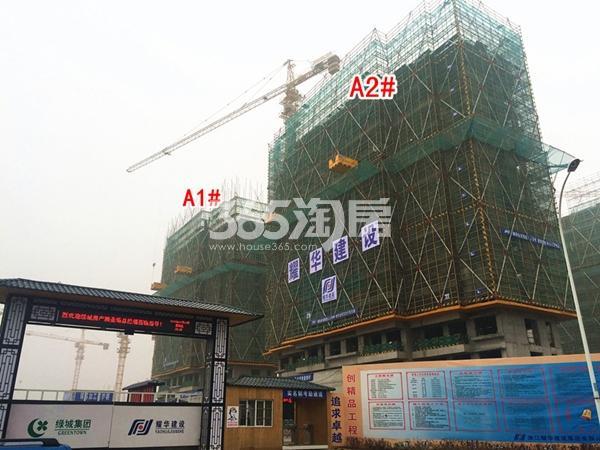 绿城凤起和鸣A1#、A2#楼工程进度实景图(2018.1摄)