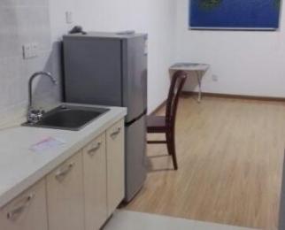 大唐国际公寓1室0厅1卫41平米整租精装
