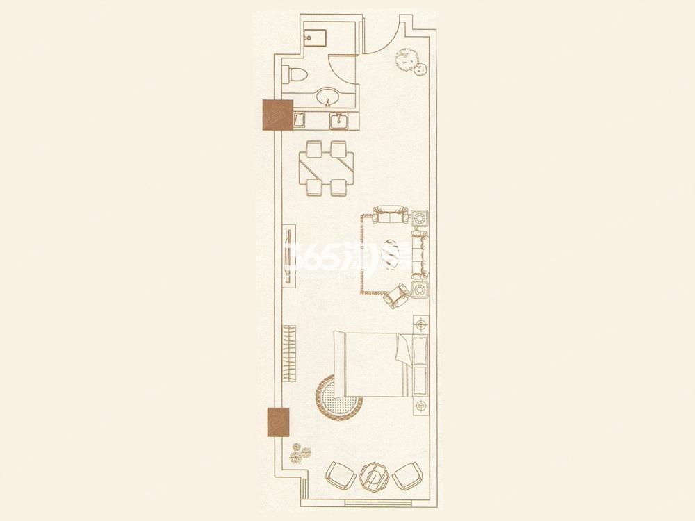 中垠紫金观邸公寓A户型图55㎡