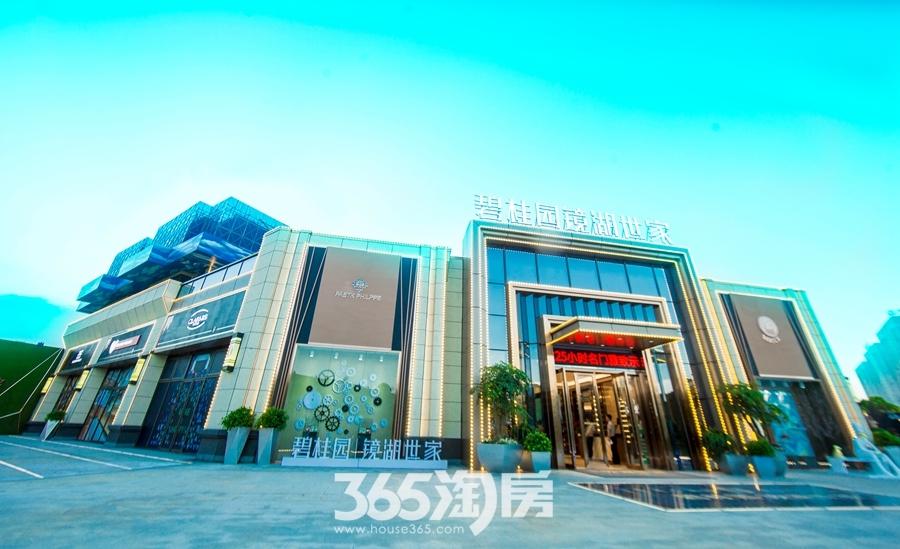 碧桂园镜湖世家营销中心大门日景实景图(2018.8摄)