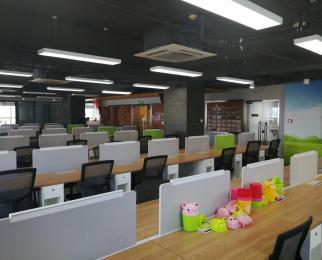 珠江路 精装修带家具 现房实景照片 80个工位 加两间独立