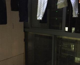滨湖世纪城琼林苑 师范2小48中学 不限购 南北通透 学区房 地铁房