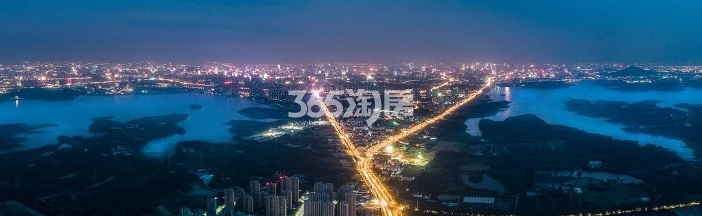 江山庐州印效果图