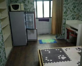 丽岛新城1室1厅1卫20平米整租精装