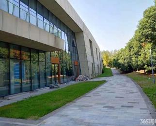 南京国际青年文化公园 办公环境好 户型方正 采光绝佳