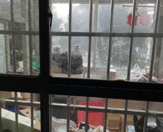 琥珀花园 电梯房带退台 新城学区