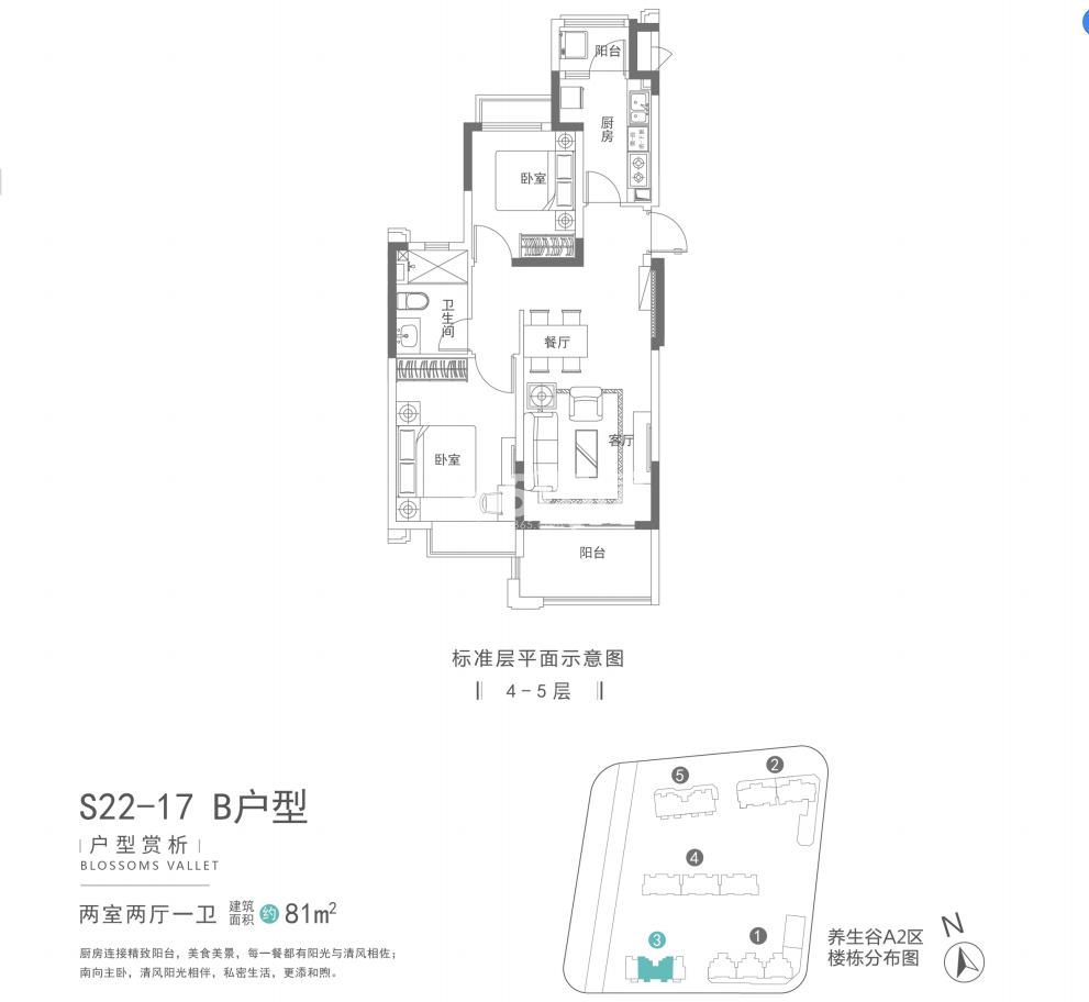 南京恒大养生谷81㎡B户型(S22-17)