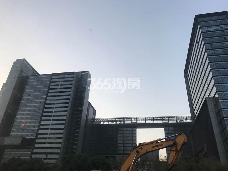 涵碧楼项目实景图(12.3)