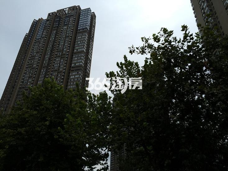 世茂外滩新城项目实景图(09.15)