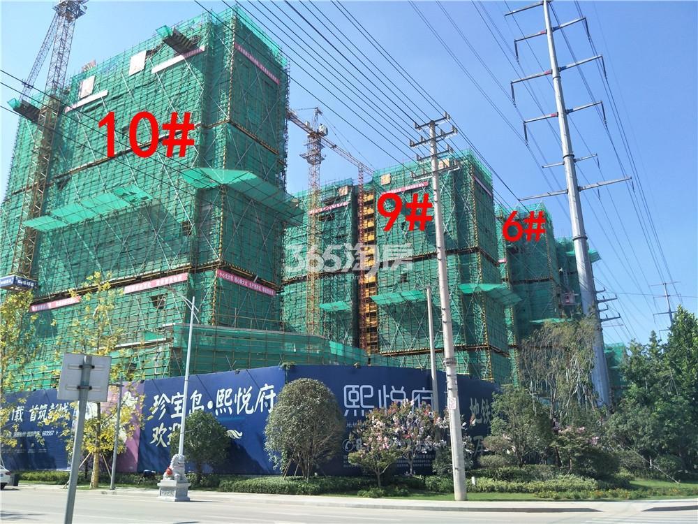 珍宝岛熙悦府6、9、10#楼实景图(8.27)