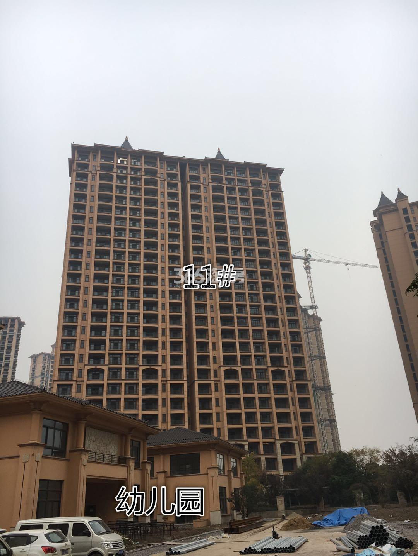 雅居乐滨江国际11号楼实景图(11.15)