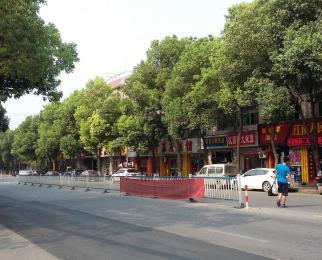 河西江东中路奥体大街纯商业门面直租房型规则免餐饮
