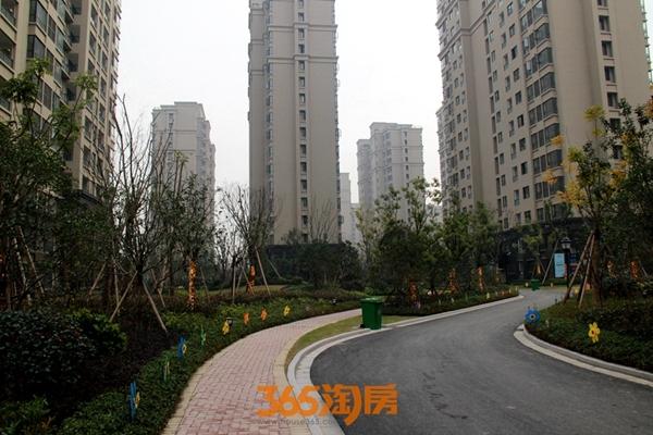 三潭音悦和园绿化实景图(2017.12摄)