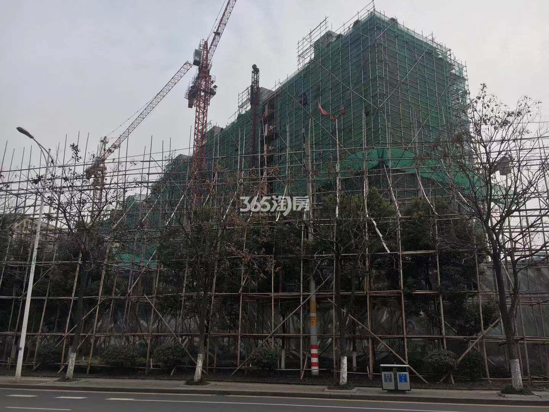 通宇林景尊园3号楼实景图(2.26)