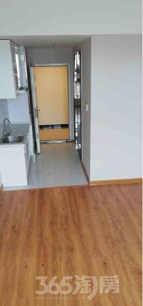 扬州万达广场1室2厅2卫30平米整租豪华装