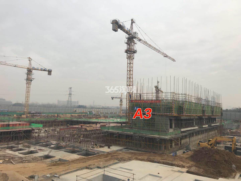 城建琥珀御宾府A3栋楼工程进度实景图(2018.2.23)