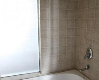 溧水约翰温泉大酒店(四星级)内1室1厅1卫46平米整租精装