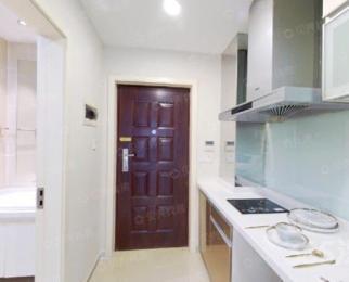 金龙钱江MOHO1室1厅1卫70平米豪华装整租