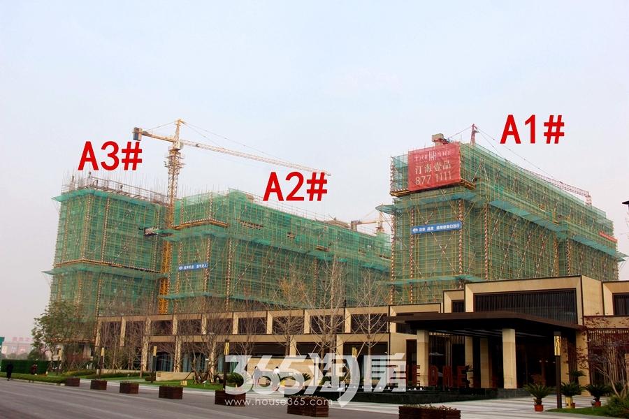 汀海壹品A1#、A2#、A3#楼12月工程进度(2018.12摄)
