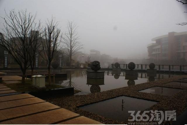 【依山自然天成国信伴水a客厅客厅自然天城风别墅别墅欧式图片