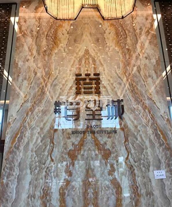 仙林首望城售楼处实景图(2.24)