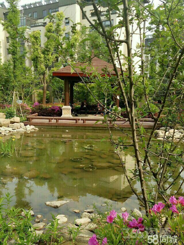 景山玫瑰园4室2厅2卫20平米合租精装