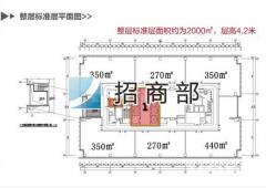 甲级纯写 苏宁睿城 招商 面积 270至2000可随意分割