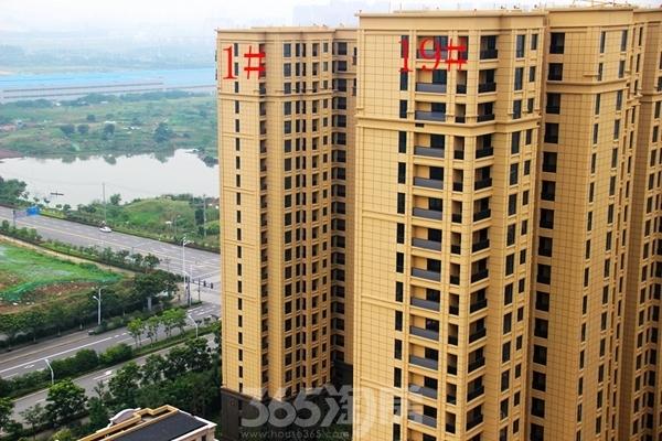 柏庄香府1#、19#楼工程进度(2018.5摄)