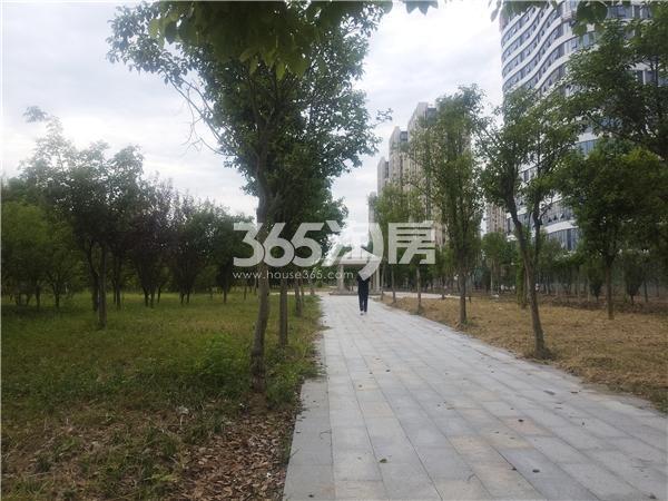 聚云商务广场 实景图 201809