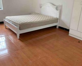 新河七队2室0厅1卫90平米整租精装